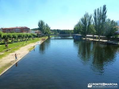 Pinares Navaluenga; puente del pilar viajes;senderismo en la sierra de madrid;rutas senderismo madri